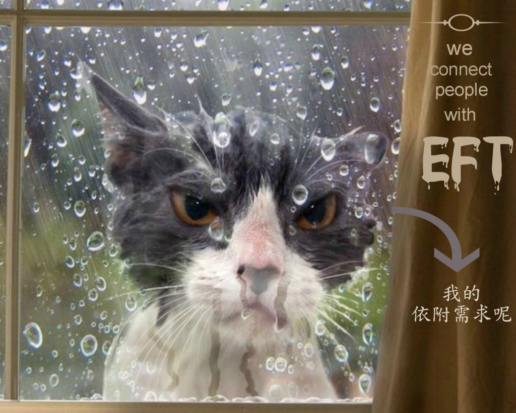 eft-angry-window-wetcat-words